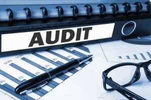 folder with label audit